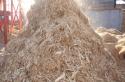 Paillis de bois de cèdre